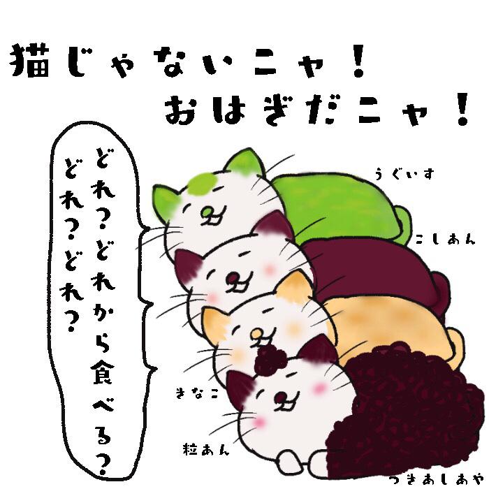 気まぐれ猫おはぎ
